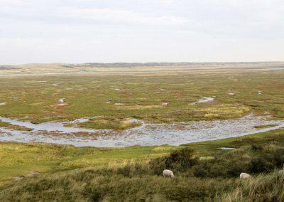 De Slufter Texel - Sea Inlet (Isle of Texel)