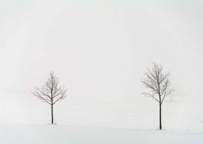 Winter Landscape with Trees 3